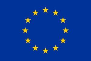 SPE - Noua forma juridica pentru IMM-urile europene