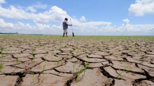 SUA se confrunta cu cea mai grava seceta din ultimii 56 de ani