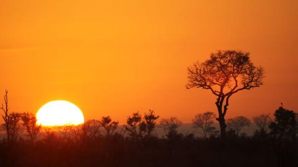 Safari in Africa de Sud: Relaxeaza-te in natura salbatica