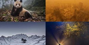 Sase romani sunt finalisti la cel mai mare concurs de fotografie din lume