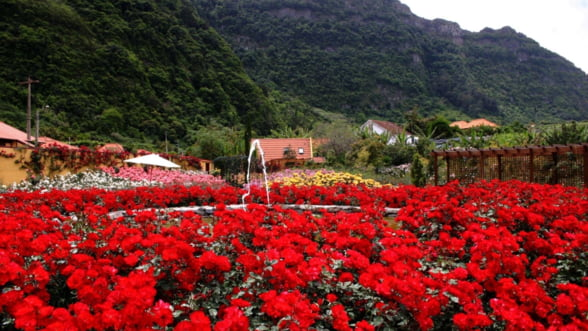 Scapa de iarna pe insula primaverii - Madeira