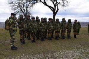 Scorpions Fury la Brasov: 1.800 de militari fac exercitii in caz de atac asupra unei tari NATO