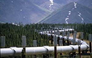 Se formeaza consortiul pentru rezolvarea crizei gazului