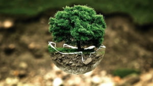 Secretarul general al ONU: Criza climatica tine de noi. Razboiul nostru cu natura trebuie sa ia sfarsit!
