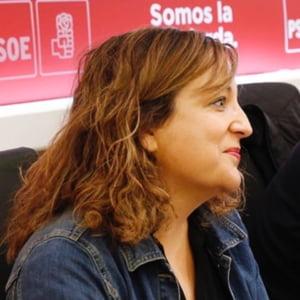 Sefa socialistilor din PE ii avertizeaza pe liberalii romani sa nu mearga pe calea Poloniei si Ungariei: Ce replica a primit