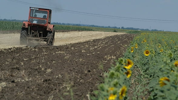 Seful APIA Harghita: Trebuie diversificata oferta de credite pentru agricultori