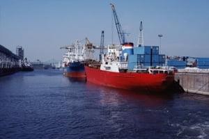 Deprecierea leului indeamna exportatorii la masuri drastice