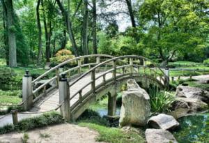Sibiul construieste cu bani de la UE un parc de 6 hectare pe locul unei gropi de gunoi