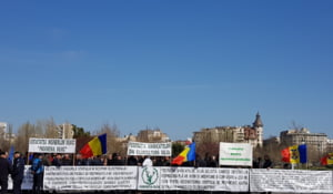 Silvicultorii protesteaza la Parlament: Cer sa fie respins proiectul prin care Dragnea da Bisericii 650.000 ha de paduri