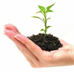 Statul porneste un program pentru incurajarea infiintarii de IMM-uri