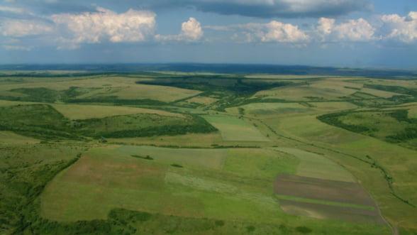 Statul va cere despagubiri firmelor privatizate care vand terenuri fara sa-si fi majorat capitalul