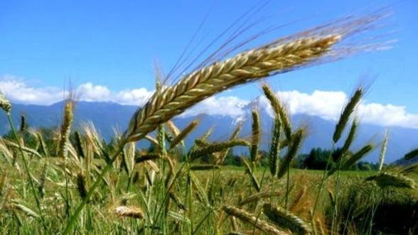 Stelian Fuia: Anul agricol 2012 se va incrie in limite normale