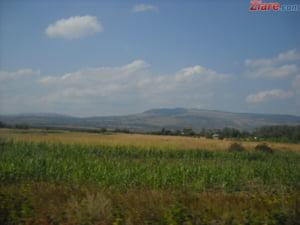 Strainii nu vor mai putea cumpara prea usor terenuri agricole in Romania