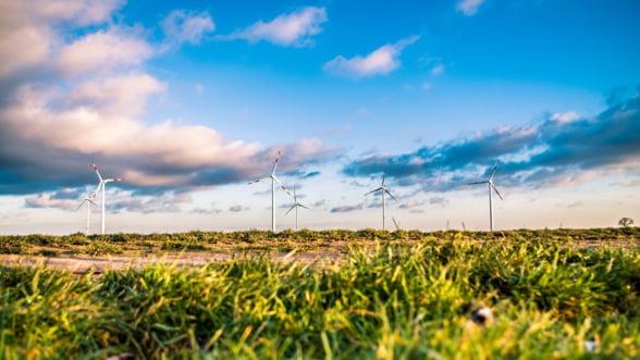 "Studiu EY: Cresc investitiile in energie regenerabila. Sectorul intra in faza ""fara subventii"""