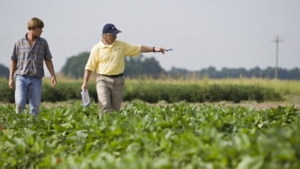 Subventiile unitare in agricultura devin amintire. Ce formula au ales fermierii