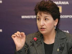 Sulfina Barbu: PDL sustine in continuare cota unica