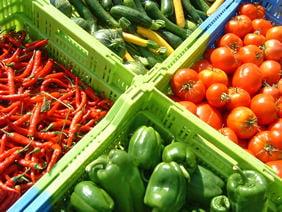 Suprafata cultivata cu legume ecologice s-a dublat