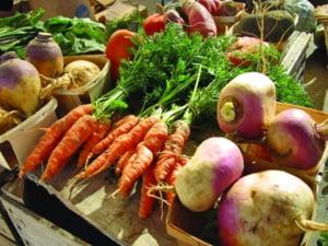 Suprafata cultivata in sistem ecologic a crescut cu 29%, in 2011