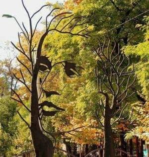 Teiul lui Eminescu atrage turistii ca un magnet: Arborele-monument supravietuieste gratie unui fenomen biologic rar