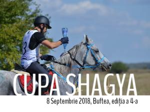 Timp liber in familie pentru iubitorii de cai: Vino la Cupa Shagya, sambata, 8 septembrie 2018