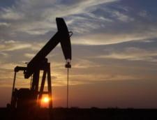 Top 10 tari bogate in petrol