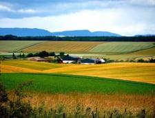 Topul detinatorilor de pamant in Romania: Pe ce locuri sunt strainii