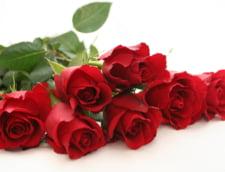 Trandafirii rosii, florile preferate de romani - genereaza peste 40% din vanzarile florariilor