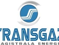 Transgaz a castigat concursul pentru privatizarea companiei de gaze din R. Moldova