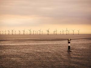 Trei giganti din industria energiei vor sa dezvolte un urias parc eolian in Marea Nordului