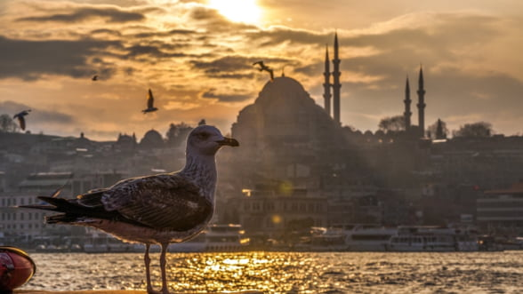Turcia a inregistrat o crestere economica de 7,4% in 2017. Cu ce riscuri vine acest avans urias