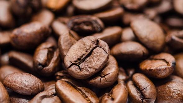 UE a importat peste trei milioane de tone de cafea in 2018. Cine sunt cei mai mari consumatori