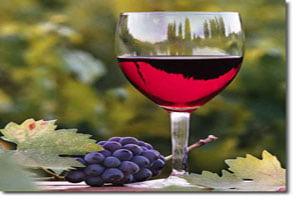 UE da producatorilor de vin subventii suplimentare de 510 milioane euro