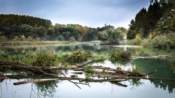 UE investeste 59 de milioane de euro in transportul fluvial de la Marea Neagra la Dunare