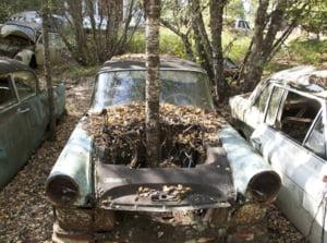 "USR vrea ca ""masinile fara stapan"" sau abandonate sa fie ridicate dupa 6 luni si vandute de autoritati. Doar in Bucuresti sunt 3.000"