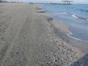Udrea: Nu avem agrement pe litoral!