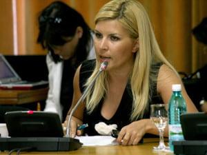 Udrea: finantare de 2,5 milioane euro pentru judetul Satu Mare