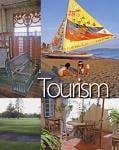 Udrea vrea combatarea evaziunii din turism