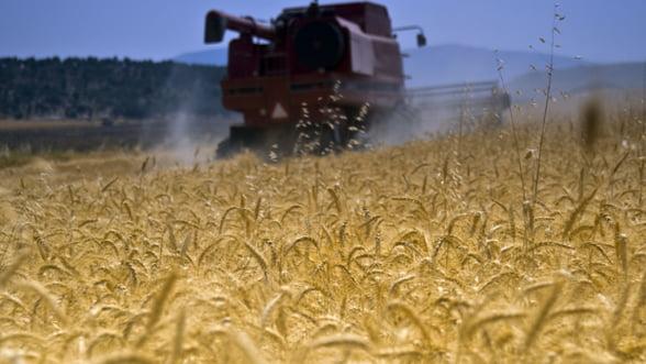 Un nou produs de creditare pentru fermieri: Coreleaza dobanda cu pretul cerealelor