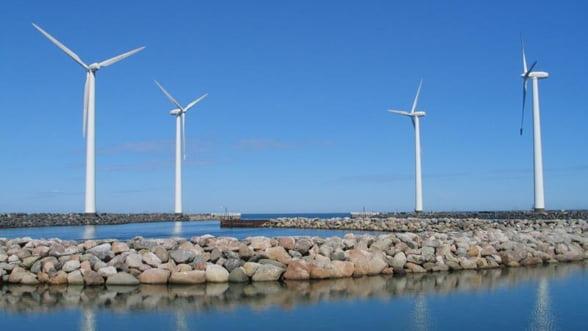 Un parc eolian din Tulcea ar putea fi achizitionat de un joint venture