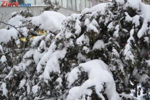 Un val de aer polar a inghetat Europa: Zeci de oameni au murit. La Moscova e cel mai rece Craciun din ultimii 120 de ani