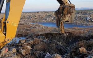 VIDEO Cazul oilor inecate in Portul Midia: Lesurile a mii de animale au fost ingropate in camp, desi trebuiau incinerate. Ancheta a procurorilor