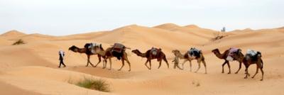 Vacanta cu mai putin de 500 de euro: Descopera Tunisia, tara contrastelor cu parfum de iasomie