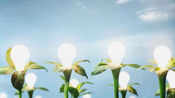 Valoarea certificatelor verzi emise in primele 11 luni a trecut de 260 milioane de euro