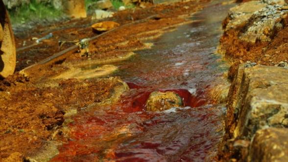 Valoarea metalelor rare din zacamintele de la Rosia Montana, mai mare decat a aurului - expert