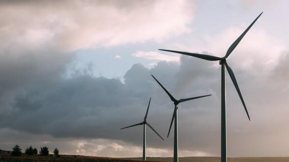 Vantul bate cu putere, iar eolienele urca pe primul loc in topul surselor de energie electrica
