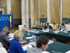 Victor Alistar sustine ca bugetul poate fi adoptat de guvern si fara avizul consultativ al CSAT