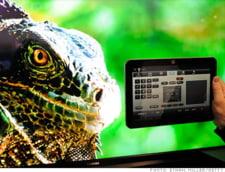 Viitorul publicitatii: Al doilea ecran pe TV-ul consumatorului