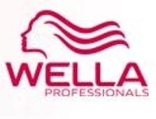 Wella Romania a fost preluata Interbrands