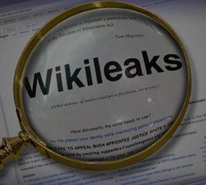 WikiLeaks: pierderi de peste 480.000 de euro pe saptamana