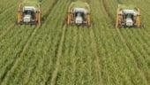 Vladescu vrea o colectare mai buna a darilor din agricultura si impozitarea terenurilor dupa valoare